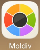 moldiv-icon